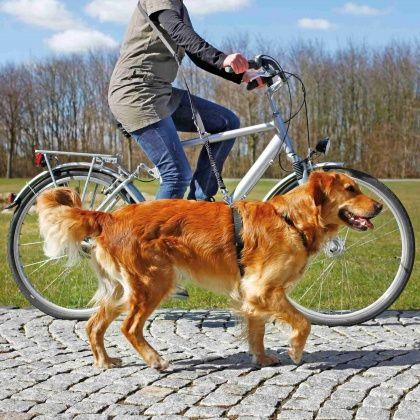Trixie Fahrrad- und Joggingleine, 1,00 - 2,00 m / 25 mm